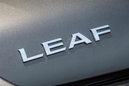Nissan Leaf Customers